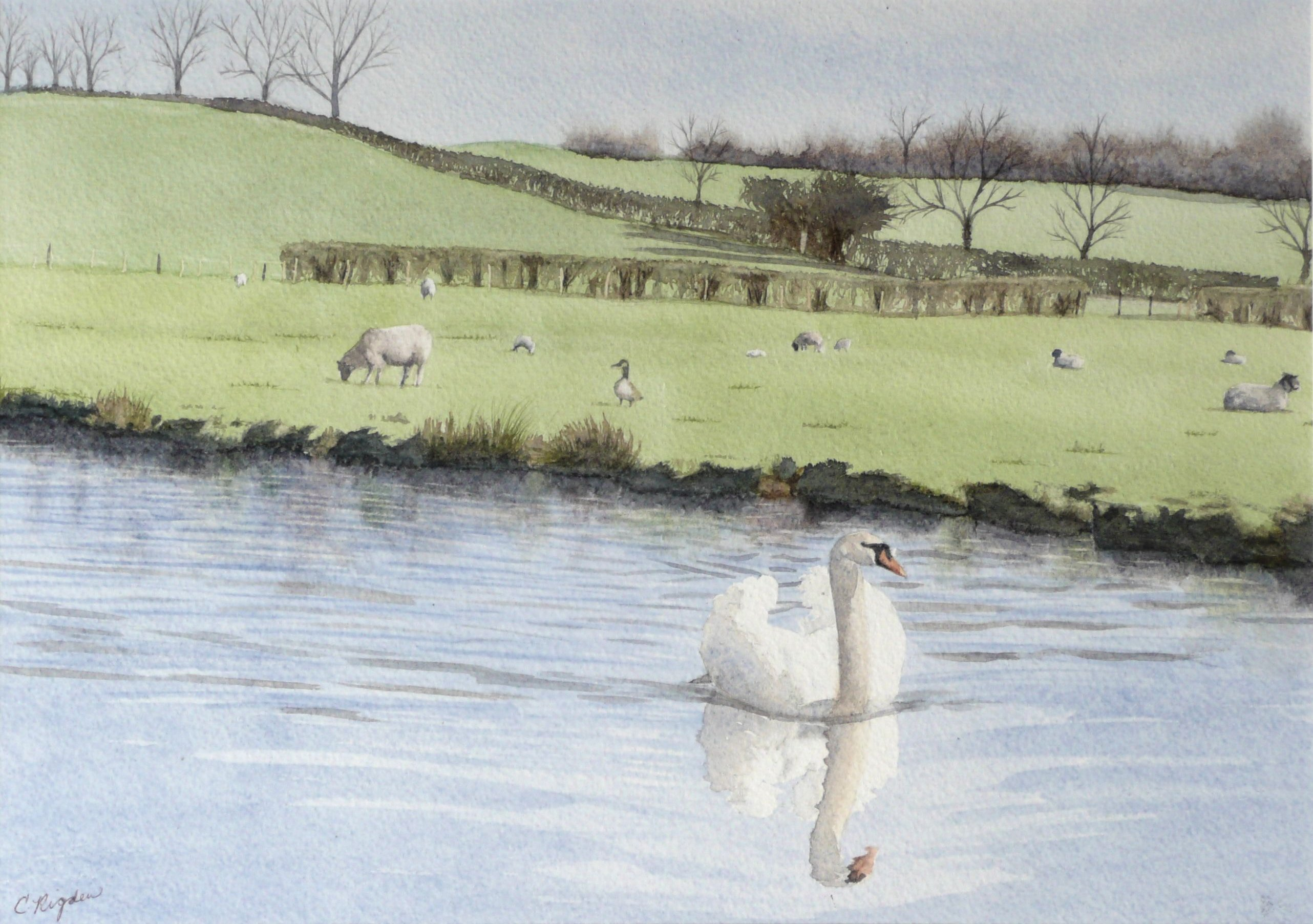"Early Spring, watercolour, 12"" x 8"" (Christine Rigden)"