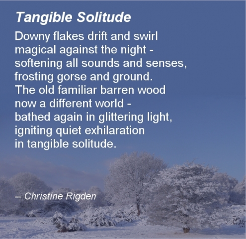Tangible Solitude